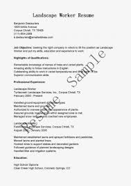 Best Resume Format For Airport Ground Staff by Writing And Editing Services Cover Letter Engineering Maintenance