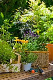 gardening real simple