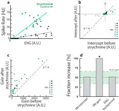divisive gain modulation of motoneurons by inhibition optimizes