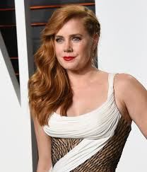 Pay Vanity Fair Amy Adams Took Role Despite Less Pay Than Men Portland Press Herald