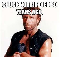 Meme Pictures Without Captions - chuck norris memes are 100x funnier without the bottom caption