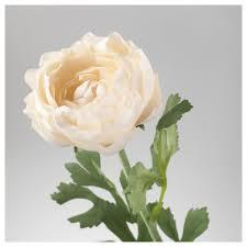 Ranunculus Flower Smycka Artificial Flower Ranunculus White 52 Cm Ikea