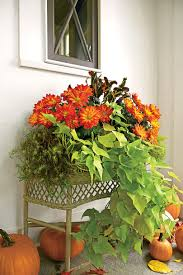 list of fall flowers fall container gardening ideas southern living