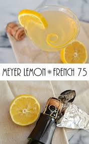 french 75 recipe meyer lemon french 75 cocktail recipe sofabfood