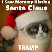Grumpy Cat Memes Christmas - christmas grumpy cat quotes quotesgram grumpy cat pinterest