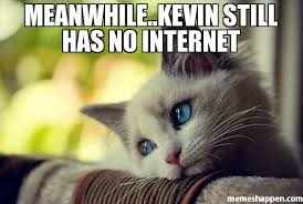 Internet Meme Cat - meanwhile kevin still has no internet meme first world problems