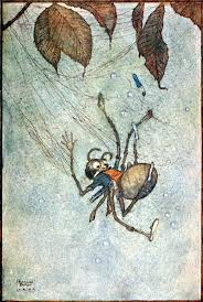 best 25 big spiders ideas on pinterest scary spiders colorful