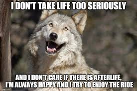 Meme Wolf - 15 top wolf meme joke images and photos quotesbae