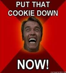 Arnold Schwarzenegger Memes - put that cookie down know your meme