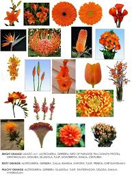 Flowers For November Wedding - 104 best orange coral and or peach wedding flowers images on