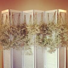 wedding backdrop on a budget babys breathe and hemp rope used to create a wedding backdrop