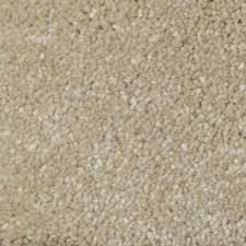 home decorators collection carpet sample appalachi i s f
