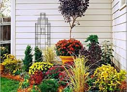 outdoor plants colorful flower landscaping awesome backyard