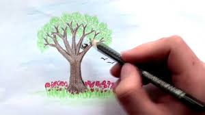 how to draw a tree with colored pencils lesson 2