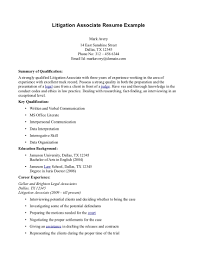 Ceo Resume Sample Identify And Define The Main Parts Of An Essay Hotel Rwanda Essay