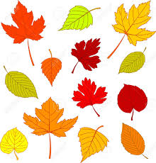 152 451 autumn leaves cliparts stock vector and royalty free
