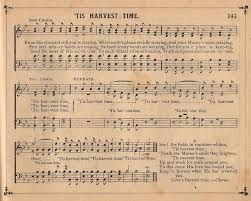 harvest time sheet the graphics