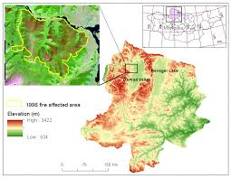 Canada Forest Fire Map by Forests Free Full Text Effects Of Burn Severity And