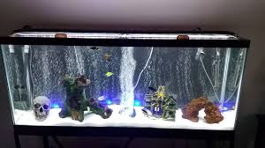 Fully Upgraded 55 Gallon Aquarium Led Lights Youtube