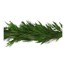 shop 20 ft fresh white pine garland at lowes