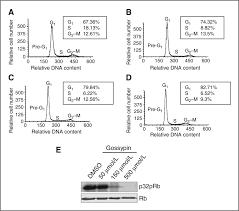 gossypin as a novel selective dual inhibitor of v raf murine
