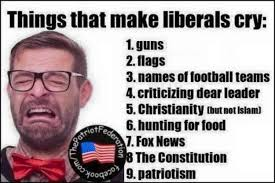 Liberal Meme - hilarious meme reveals 9 things that make liberals cry