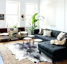 salon avec canapé gris quel tapis avec canape gris tapis pour salon gris quelle couleur de