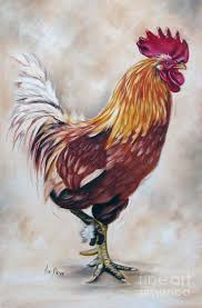 18 best for the kitchen roosters images on pinterest roosters