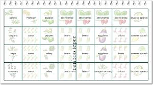 my raised bed garden plan 2011 a hen u0027s nest nw pa mom blog