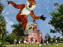 auburn alumni search 1109 best auburn images on auburn tigers auburn
