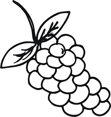 grape coloring page glum me