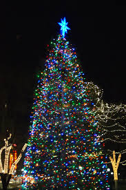 what you missed at the boston common tree lighting