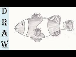 clown fish pencil drawing youtube