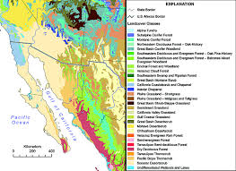 Map Of Sonora Mexico by Brown And Lowe Vegetation Community Map Modified Wild Sonora