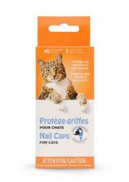 eviter griffe canapé masked claw 40 protège griffes collants pour chats m