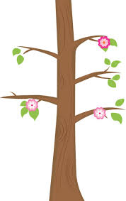 203 best tree images on pinterest clip art drawings and pictures