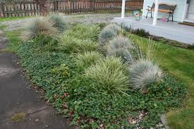 Ideas For Small Front Gardens by How To Build A Rain Garden Diy Network Blog Made Remade Diy
