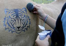 sally rees creates temporary tattoos for horses daily mail online
