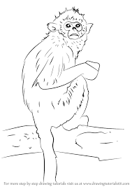 learn how to draw a golden snub nosed monkey primates step by