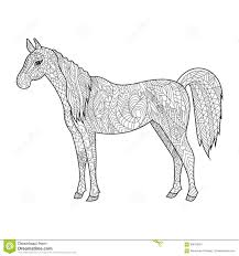 horse coloring book for adults vector stock vector image 69679524