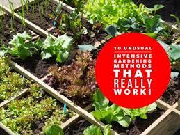 10 weird intensive gardening methods that really work gardening