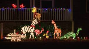 Giraffe Christmas Light Decoration by Holiday Lights Whnt Com