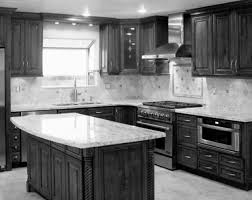 black kitchen cabinets home depot kitchen cabinets vs light
