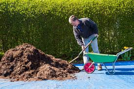 Types Of Garden Mulch What Is Mulch And Which Mulch Should You Use Where