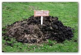 vegetable garden fertilizer tips for a healthy garden