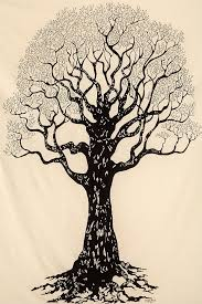 55 best tree illustrations images on pinterest drawings