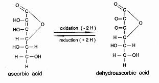 bakery technology sugar malt milk powder emulsifiers and enzymes