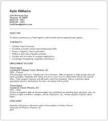 Ramp Agent Job Description Resume by Resume Travel Agent Sample Contegri Com
