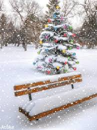 snow falling tree with lights bench