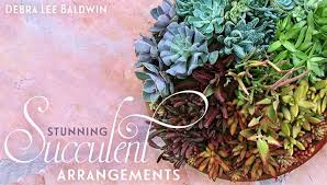 succulent arrangements learn succulent garden design in stunning succulent arrangements
